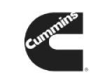 logos_cat (1)